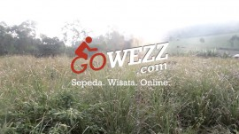 Gowezz-Launching